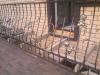 balkon-s-vinogradom